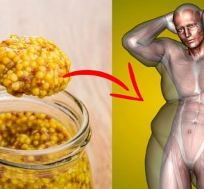 More Than Just a Condiment Unbelievable Health Benefits of Mustard