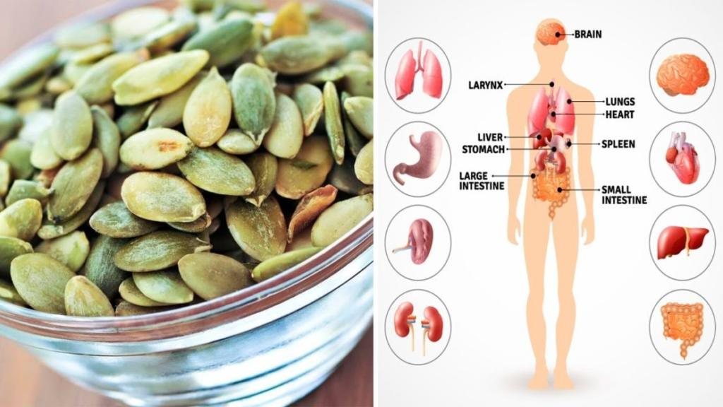Why You Should Add Pumpkin Seeds To Your Diet