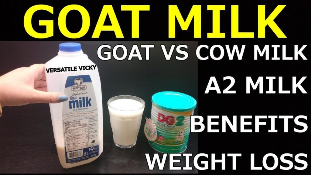Goat Milk For Weight Loss Goat Milk Benefits Goat Milk Vs Cow Milk Weight Loss Milk