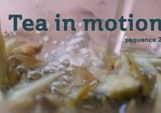 Tea in Motion The Beauty of Brewing sequence 2