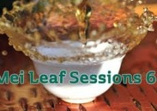 Mei Leaf Sessions 6 LIVE TEA DRUNK