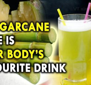 Is Sugarcane Juice is Your Bodys Favourite Drink Best Summer Juices