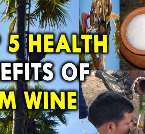 Top 5 Health Benefits of Palm Wine Health Benefits of Alcohol