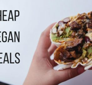 Cheap Vegan Meal Ideas for Students