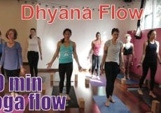 30 Minute Yoga Class 8 Limbs of Yoga Part 7 Dhyana