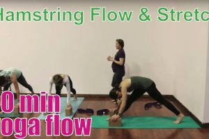 20 Minute Yoga Class Hamstring Flow Stretch