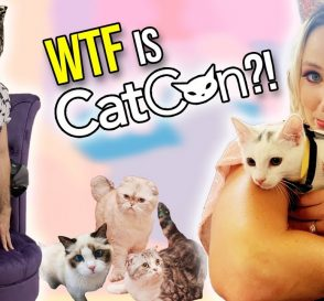 Things Get Weird at CatCon 2019